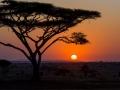 Jan-Milde-Africke-naj