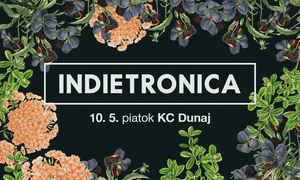 Indietronica 10 5 1008