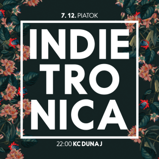Indietronica 7 12 poster 3