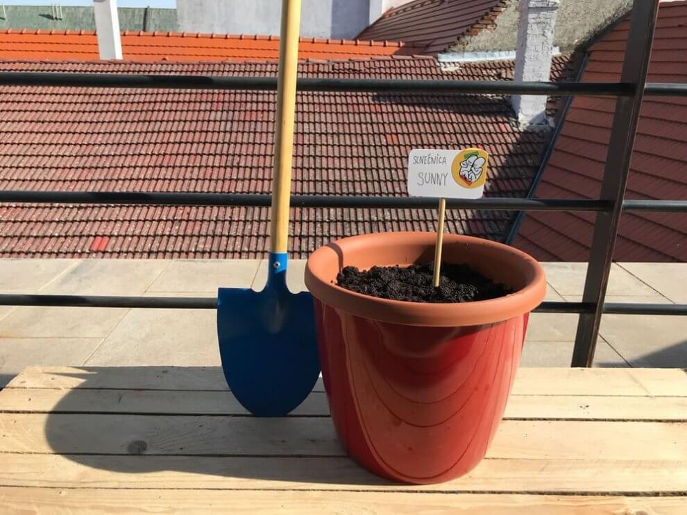 POHODA F(LOVERS) – Pomôžte vytvoriť záhradu v srdci areálu BOMBING 2